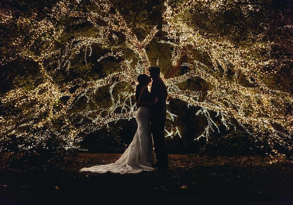 The Houstonian Hotel Tree Lights Photographer